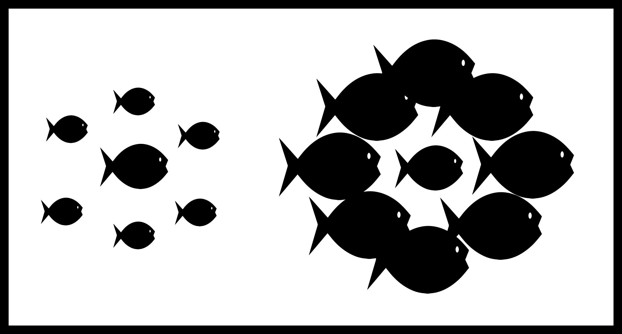 size-illusion