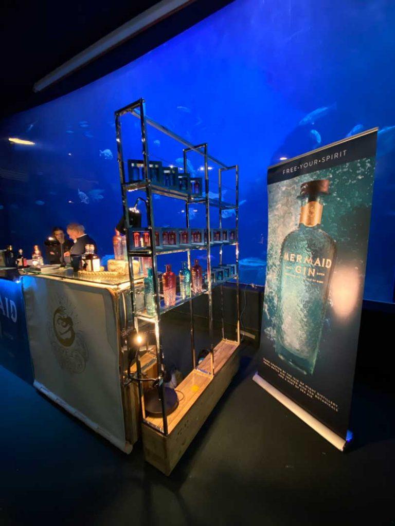 mermaid-gin-fins-plymouth-aquarium