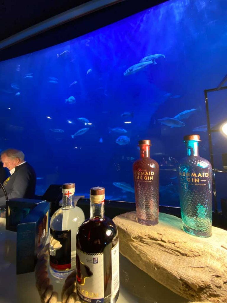 mermaid-gin-tank-fins